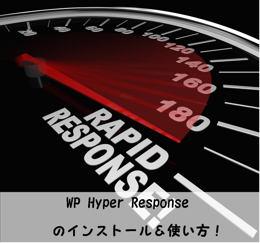 WP Hyper Responseのインストール&使い方!